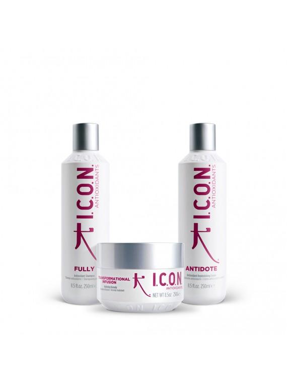 Antioxidante Pack - Fully -...